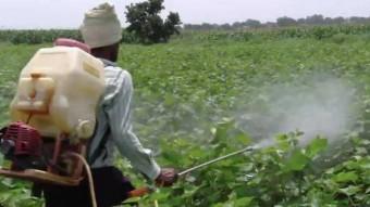 India Killer spray