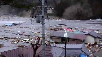 Tendenko Surviving the Tsunami