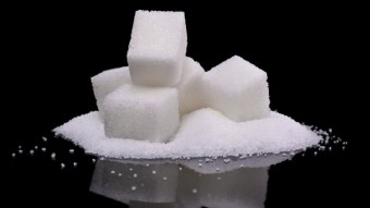 The-Secrets-of-Sugar-the-fifth-estate.jpg